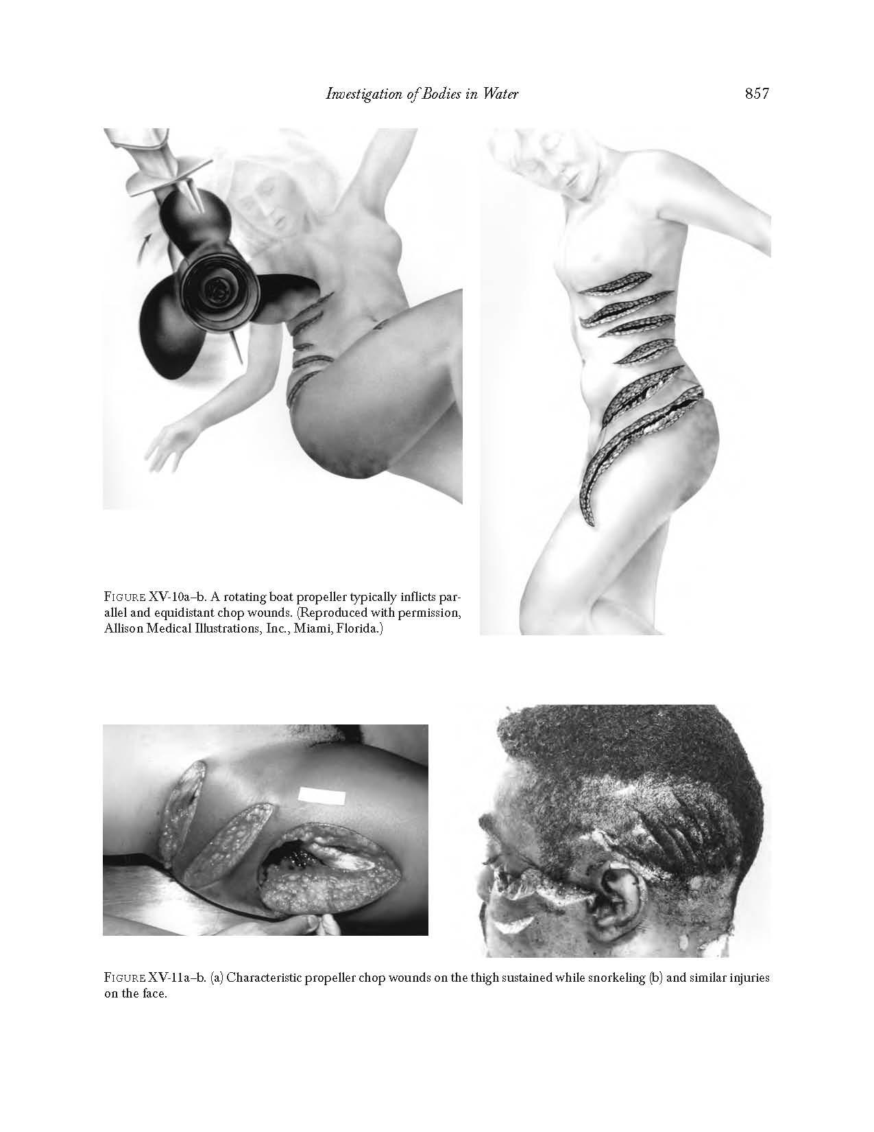 минералогический анализ шлихов